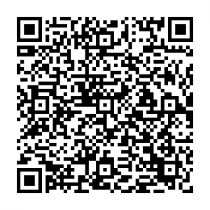 DG Motor Services - QR code for address and contact details